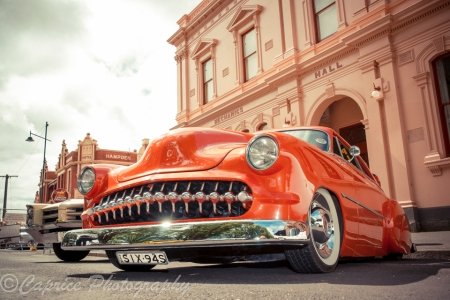 Wild ledsled custom at Camperdown Cruise