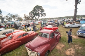 The show n shine filled quickly on Saturday