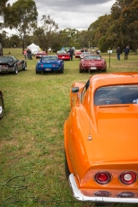 Corvettes lined up in their classes